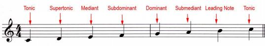 C major Degrees of the Scale
