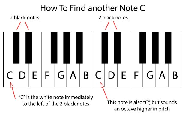 Notes on a piano keyboard one octave